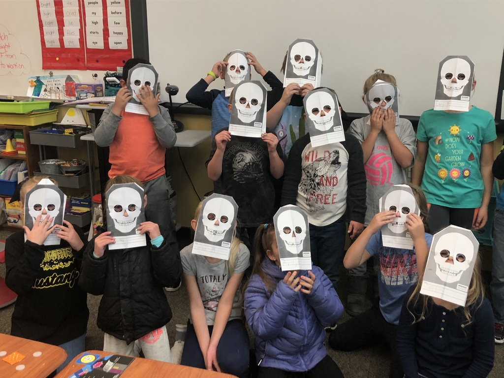 Learning about the skull with a Mystery Science lesson.