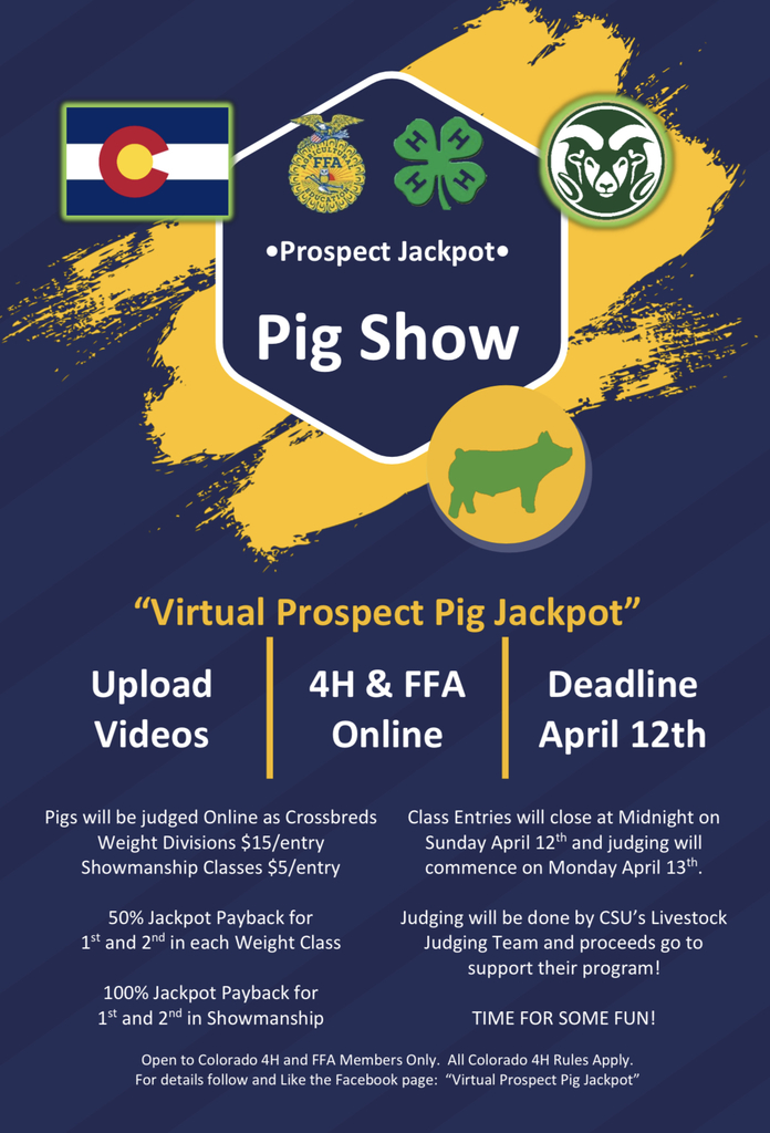 Flyer for virtual prospect pig jackpot.